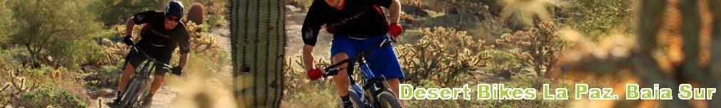 Desert Bikes La Paz Baja California Sur